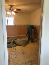 Jas remove carpet